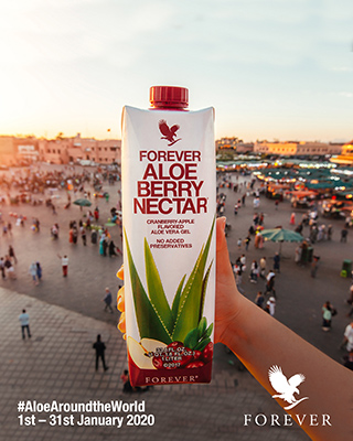 Aloe Around The World 2