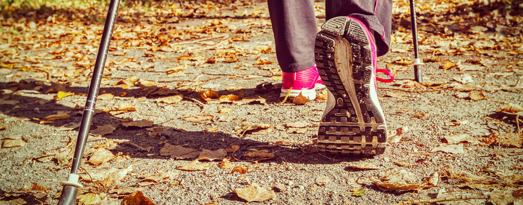 Banner image for the article How Nordic walking can impact the way you exercise