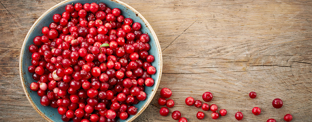 Banner image for the article Top Benefits of Cranberries for Skin and General Health