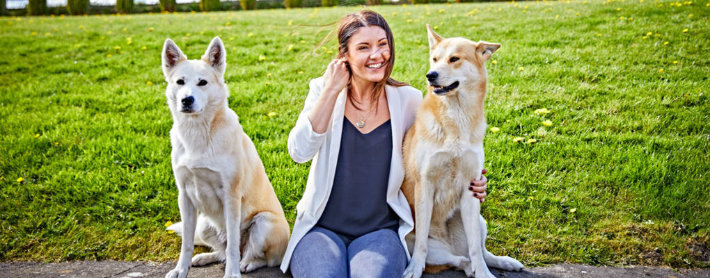 Banner image for the article Ways to pamper your pooch