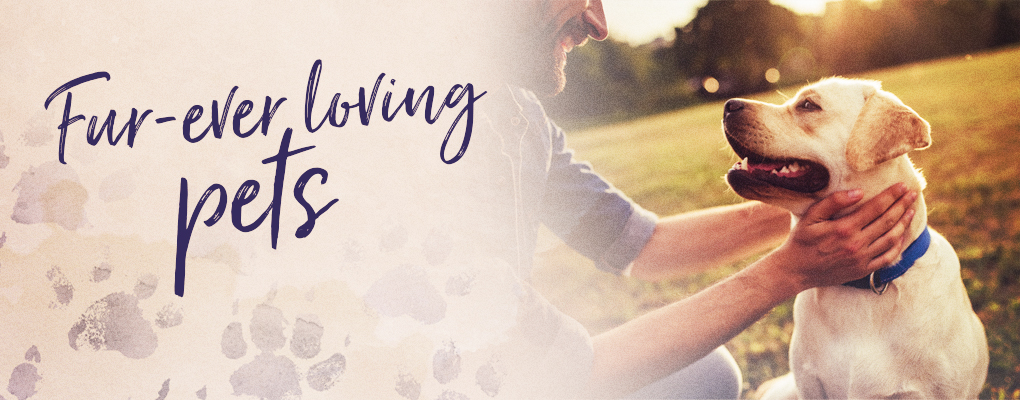 Banner image for the article Furever Loving Pets with Forever Living Products