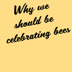 It's fair to say that not everyone is a fan of the humble honeybee. Bees can make a grown man run a mile but there is also a very real concern for the diminishing honeybee population.